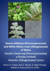 Downy Mildews (Peronosporaceae) and White Blister-Rusts (Albuginaceae) of Wales