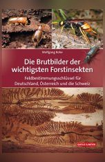 Die Brutbilder der Wichtigsten Forstinsekten: Feldbestimmungsschlüssel für Deutschland, Österreich und die Schweiz [Feeding Traces of the Most Important Forest Insects: Field Determination Key for Germany, Austria and Switzerland]