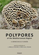 Polypores of the Mediterranean Region