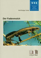 Der Fadenmolch (Lissotriton helveticus) [The Palmate Newt]