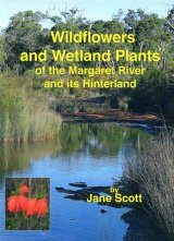 Wildflowers and Wetland Plants of Margaret River and its Hinterland