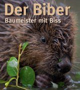Der Biber: Baumeister mit Biss [The Beaver: Builder with a Bite]