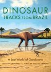 Dinosaur Tracks from Brazil