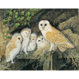 Barn Owl and Family 1,000-piece Jigsaw Puzzle