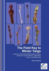 The Field Key to Winter Twigs