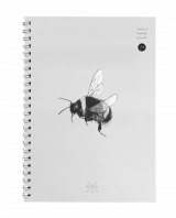 Buff-tailed Bumblebee Notebook