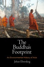 The Buddha's Footprint