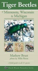 Tiger Beetles of Minnesota, Wisconsin & Michigan