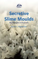 Secretive Slime Moulds