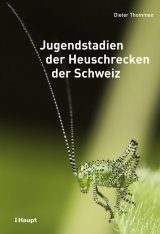 Jugendstadien der Heuschrecken der Schweiz [Juvenile Stages of the Grasshoppers of Switzerland]