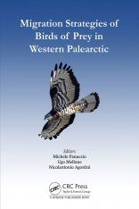 Migration Strategies of Birds of Prey in Western Palearctic
