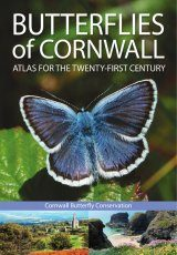 Butterflies of Cornwall