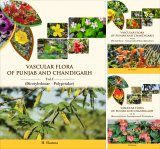 Vascular Flora of Punjab and Chandigarh (3-Volume Set)
