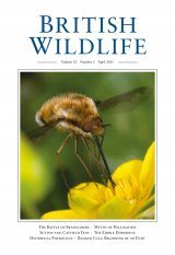 British Wildlife 32.5 April 2021