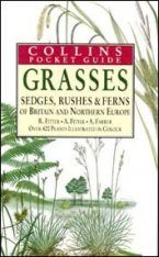 Collins Pocket Guide to Grasses Sedges Rushes and Ferns of Britain and Northern Europe