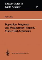 Deposition, Diagenesis and Weathering of Organic Matter-Rich Sediments
