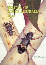 A Guide to the Genera of Beetles of South Australia, Part 6 Image