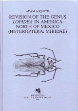 A Revision of the Genus Lopidea in America north of Mexico (Heteroptera: Mridae: Orthotylinae) Image