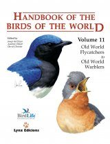 Handbook of the Birds of the World, Volume 11: Old World Flycatchers to Old World Warblers