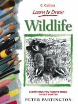 Learn to Draw Wildlife
