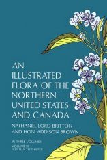 Illustrated Flora of the Northern United States and Canada 3 Image