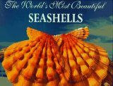 The World's Most Beautiful Seashells