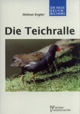 Die Teichralle [The Common Moorhen]
