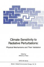 Climate Sensitivity to Radiative Perturbations