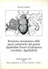Revisione Tassonomica delle Specie Paleartiche del Genere Agathidium Panzer (Coleoptera: Leiodidae: Agathidiini) [Taxonomic Revision of the Palaearctic Species of the Genus Agathidium Panzer (Coleoptera: Leiodidae: Agathidiini)]