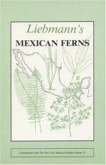 Leibmann's Mexican Ferns: