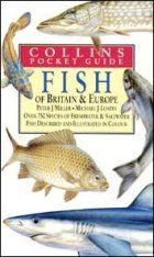Collins Pocket Guide: Fish of Britain and Europe