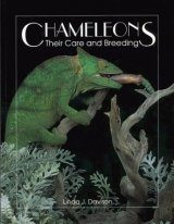 Chameleons: Their Care and Breeding