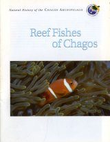 Reef Fishes of Chagos Image