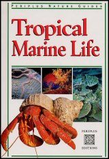 Tropical Marine Life