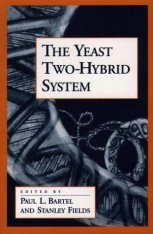 The Yeast Two-Hybrid System Image