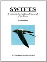 Swifts: A Guide to the Swifts and Treeswifts of the World Image