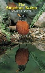 The American Robin