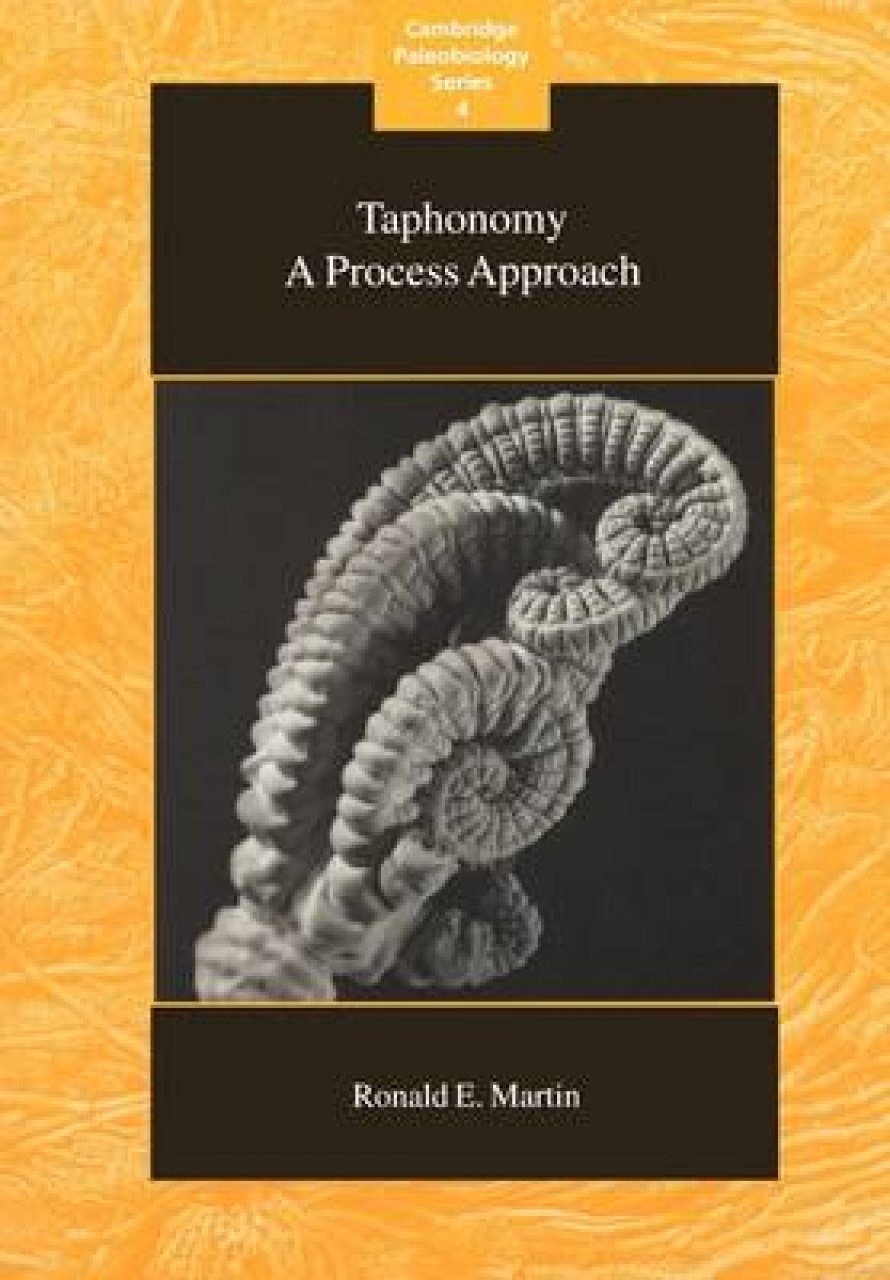 Taphonomy: A Process Approach