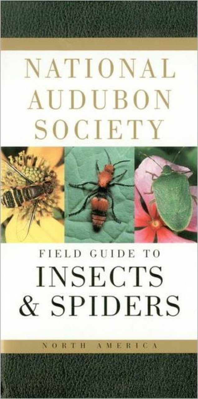 National Audubon Society Field Guide to Insects and Spiders of North America