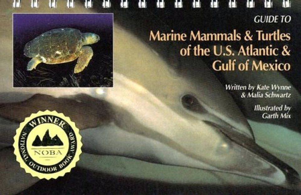 Guide To Marine Mammals Turtles Of The US Atlantic Gulf Of Mexico