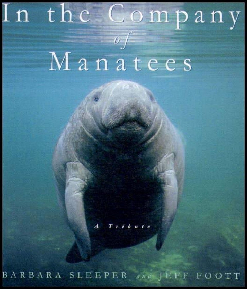 In the Company of Manatees