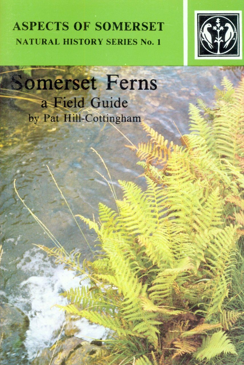 Somerset Ferns