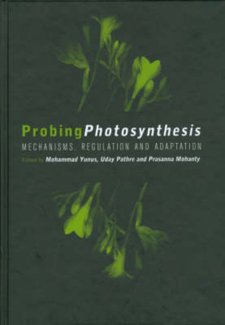 Probing Photosynthesis