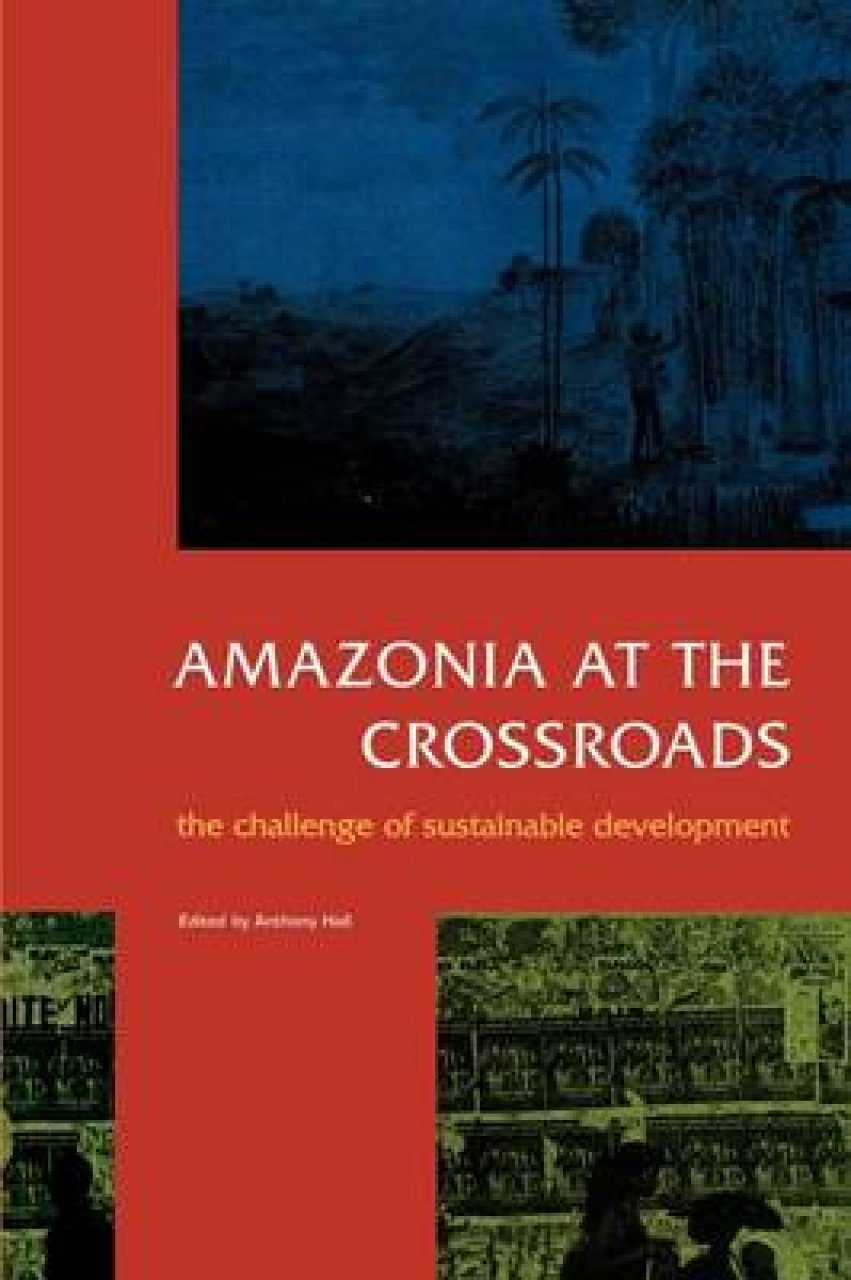 Amazonia at the Crossroads