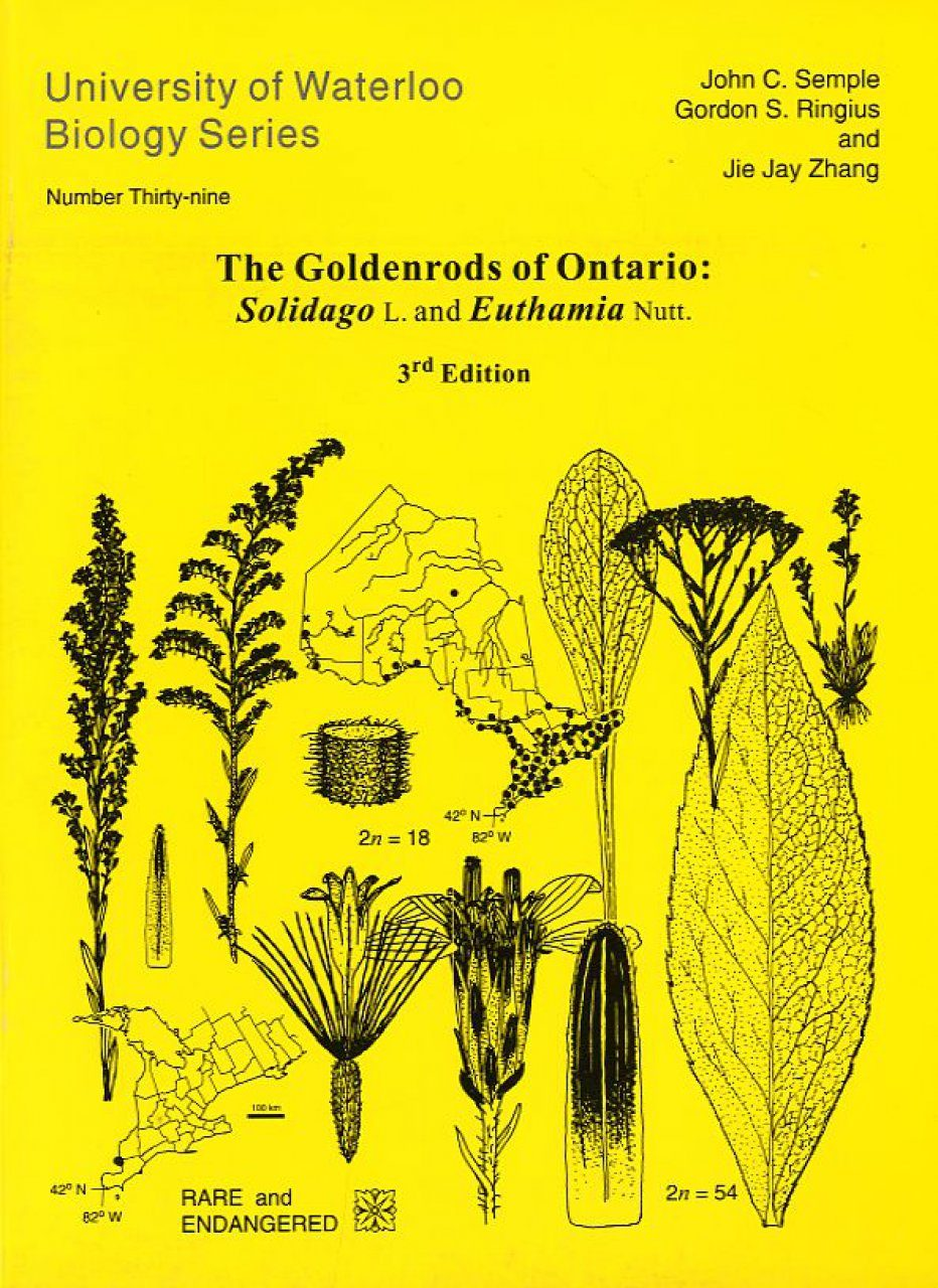 The Goldenrods of Ontario