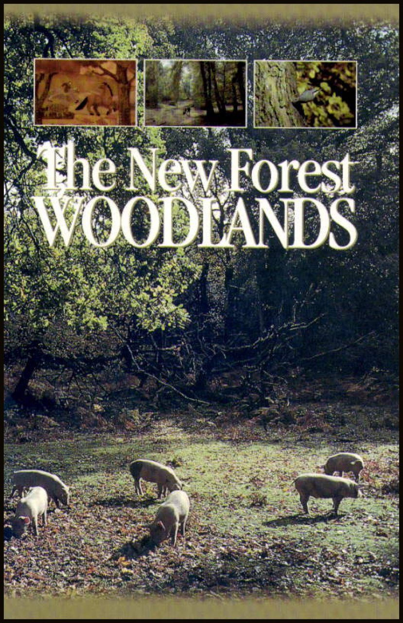 The New Forest Woodlands