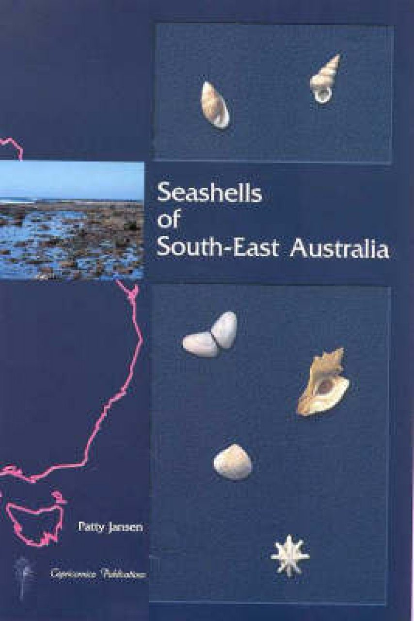 Seashells of South-East Australia