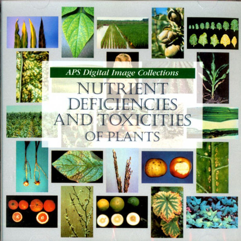 Nutrient Deficiencies and Toxicities of Plants