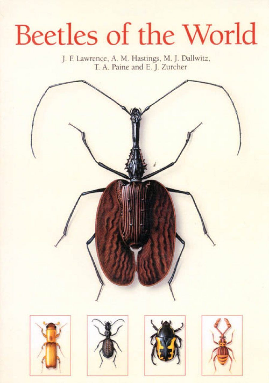 Beetles of the World & Beetle Larvae of the World (2CD-ROM)