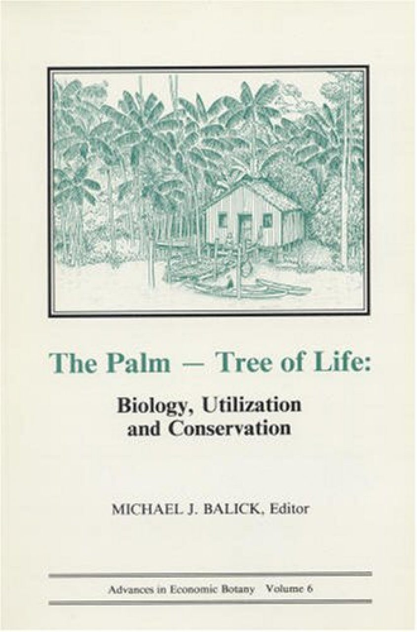 The Palm - Tree of Life